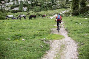 Dominik fährt einen Wanderweg in Italien